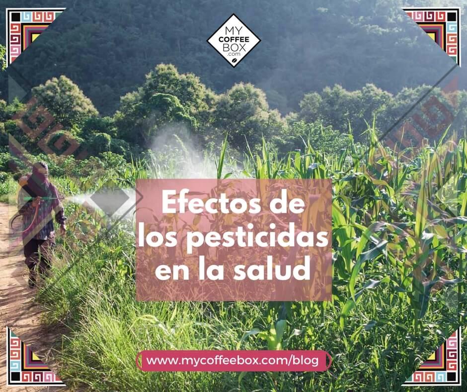 Efectos de los pesticidas en la salud